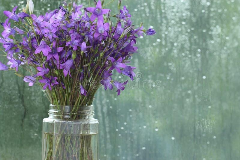 Flores púrpuras de la primavera imagenes de archivo