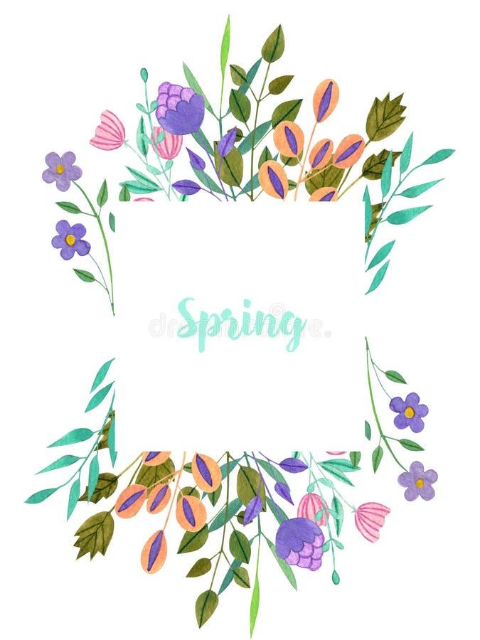 Flores púrpuras simples de la primavera y del verano de la acuarela y marco verde de las ramas stock de ilustración