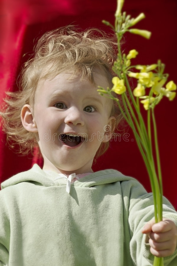 Flores para você! fotografia de stock royalty free