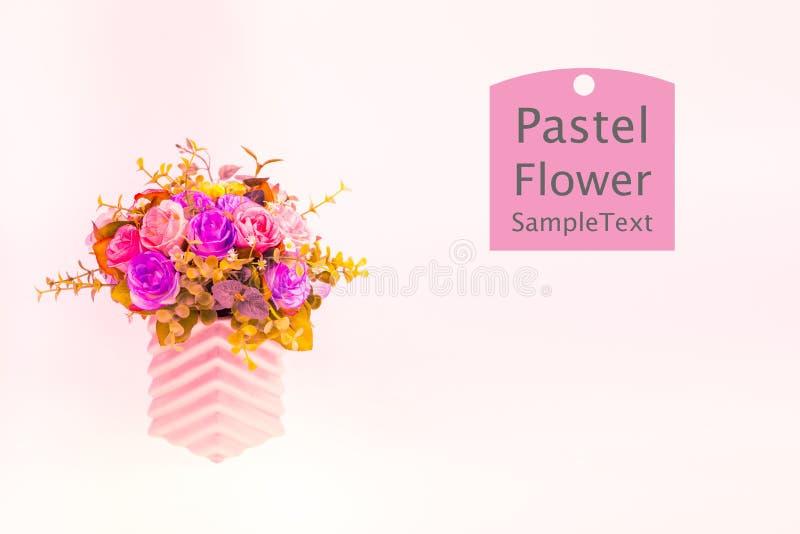 Flores pasteis cor-de-rosa fotos de stock royalty free