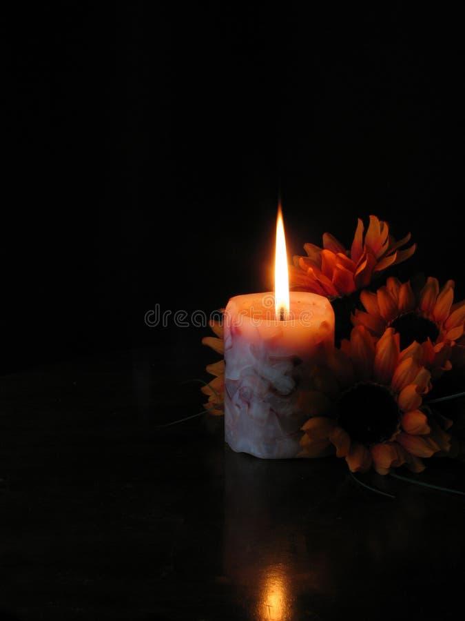 Flores por la luz de la vela. imagen de archivo libre de regalías