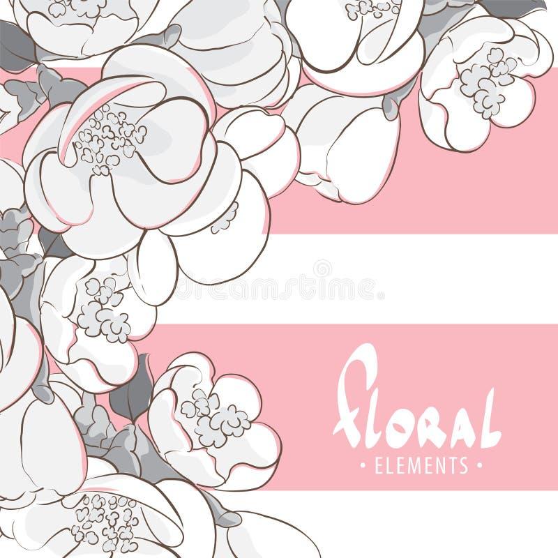 Flores preto e branco da maçã ilustração stock