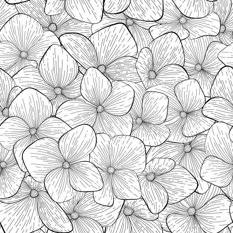 Flores preto e branco do teste padrão sem emenda ilustração do vetor
