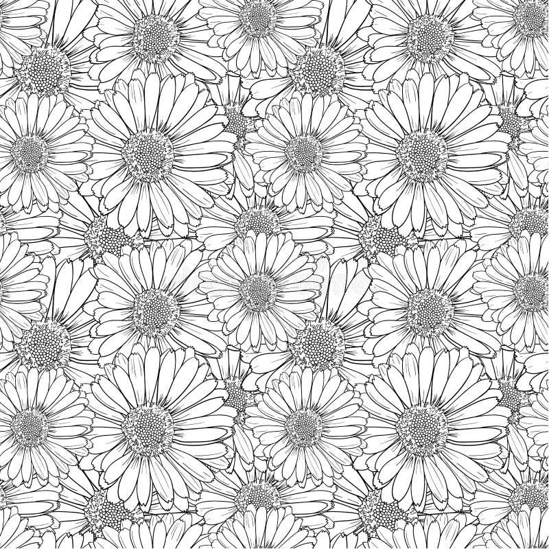 Flores que colorean antiesfuerzas del vector, modelo inconsútil, blanco y negro stock de ilustración