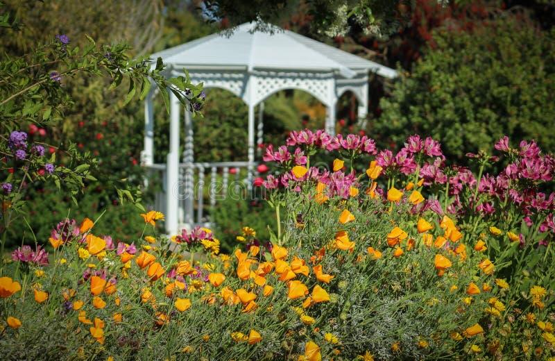 Flores que florescem no jardim botânico de costa sul, Palos Verdes Peninsula, Los Angeles County, Califórnia fotos de stock royalty free