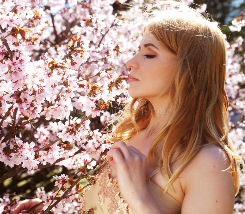 Flores que huelen de la mujer en el jardín floreciente de Sakura imagen de archivo libre de regalías