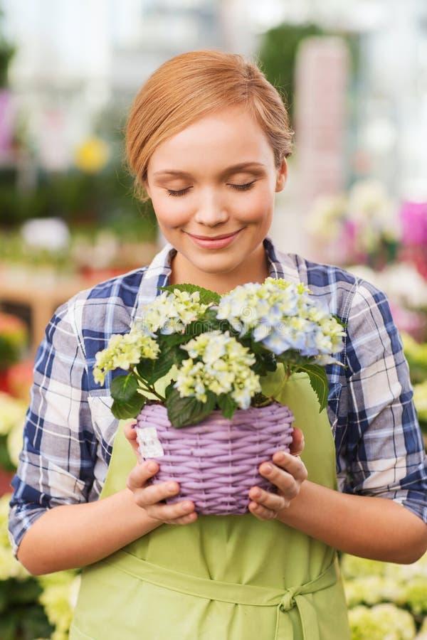 Flores que huelen de la mujer feliz en invernadero imagen de archivo