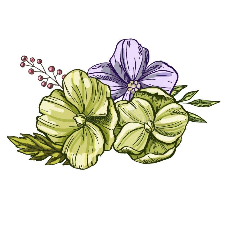 Flores realísticas e mão das folhas tirada Ilustração colorida do estilo do vintage ilustração royalty free