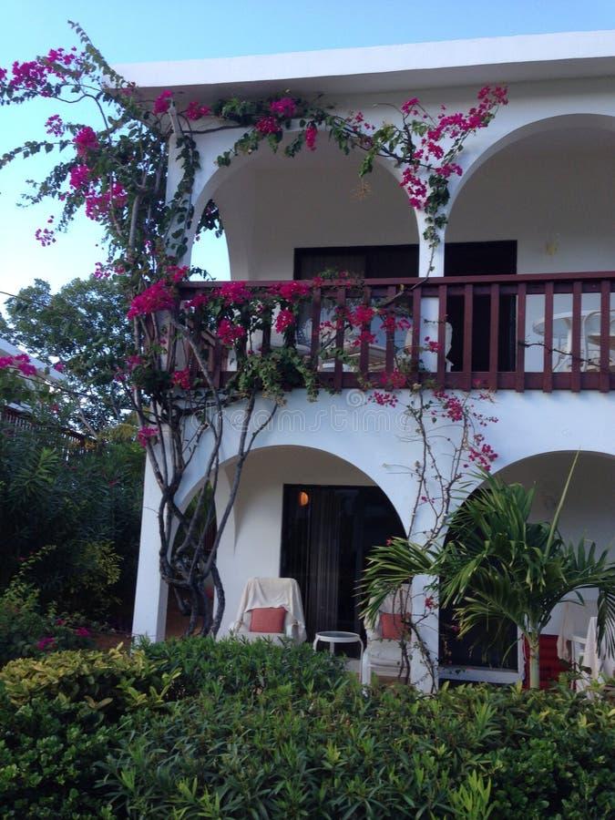 Flores rojas Bush del hotel del chalet foto de archivo libre de regalías