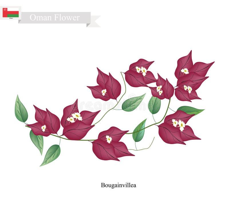 Flores rojas de la buganvilla, la flor nativa de Omán libre illustration