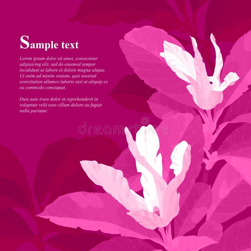 Flores rojas de la magnolia libre illustration