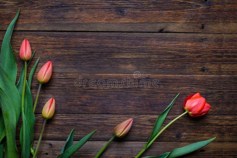 Flores rojas de los tulipanes en fondo de madera Visión superior, espacio de la copia fotografía de archivo libre de regalías