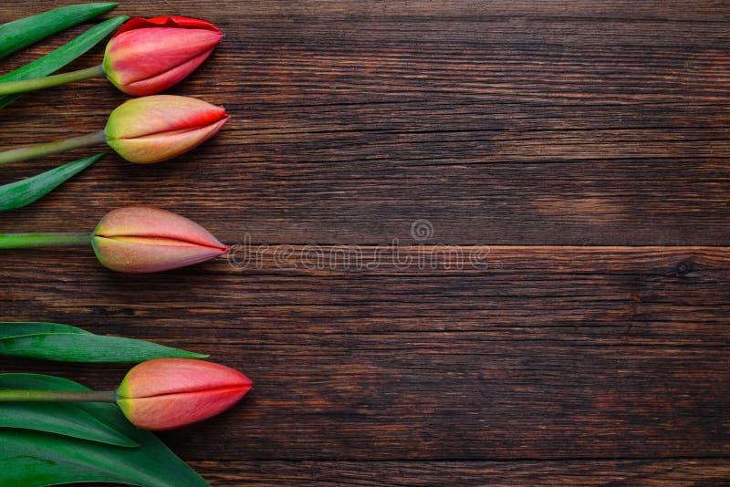 Flores rojas de los tulipanes en la tabla de madera Visión superior, espacio de la copia imagenes de archivo