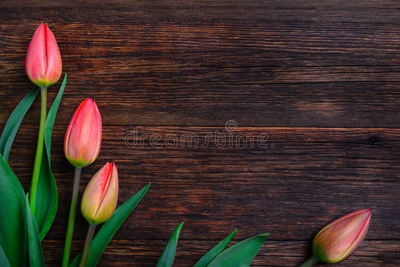 Flores rojas de los tulipanes en la tabla de madera Visión superior, espacio de la copia foto de archivo libre de regalías