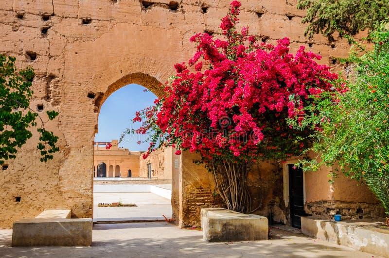 Flores rojas en Badi Palace Marrakech, Marruecos imagen de archivo