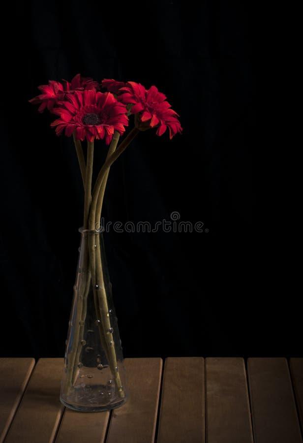 Flores rojas en un florero foto de archivo libre de regalías