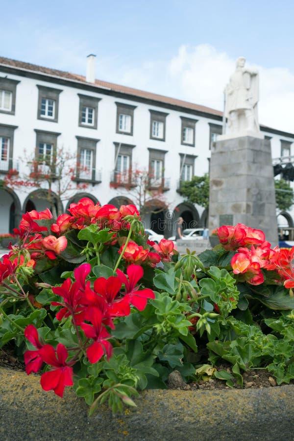 Flores rojas hermosas del Pelargonium y de la begonia contra la perspectiva de las vistas de la ciudad de Ponta Delgada fotos de archivo