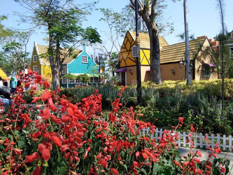 Flores rojas hermosas en el hogar de casas Europeo-hechas en un lugar de las vacaciones imágenes de archivo libres de regalías