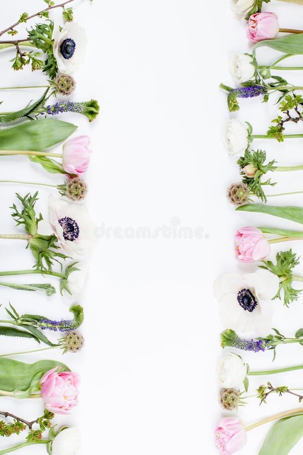 Flores, rosa e branco da mola fotografia de stock