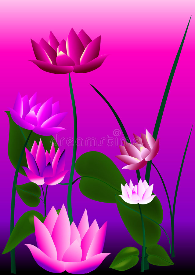 Flores rosadas libre illustration