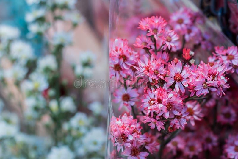 Flores rosadas borrosas de la imagen de fondo imágenes de archivo libres de regalías