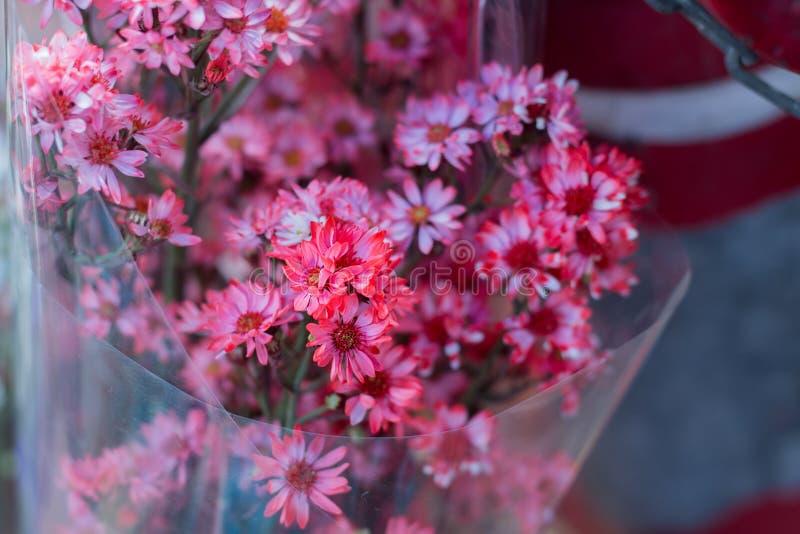 Flores rosadas borrosas de la imagen de fondo foto de archivo