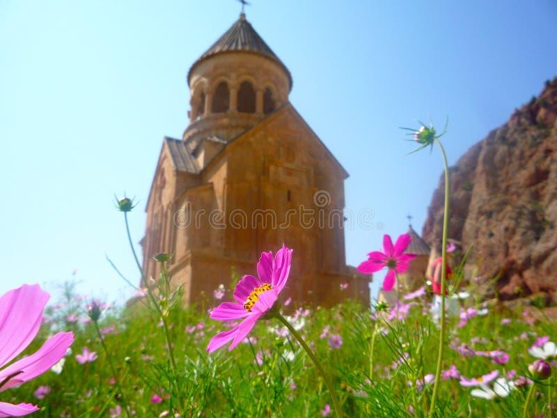 Flores rosadas con la iglesia en el fondo foto de archivo