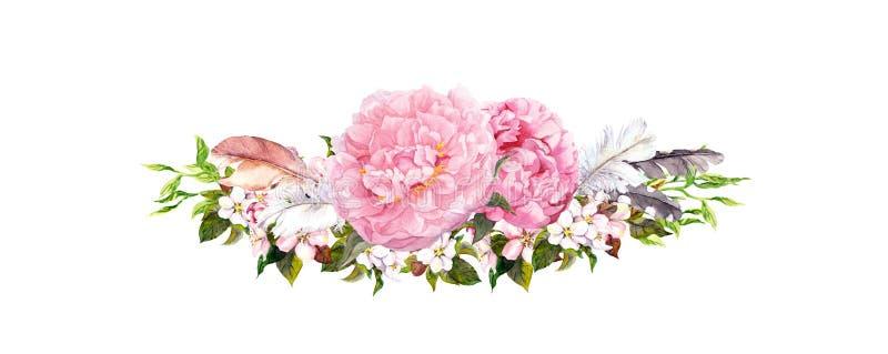 Flores rosadas de la peonía, rosas, plumas Acuarela en estilo del vintage libre illustration