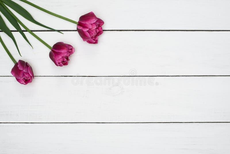 Flores rosadas de los tulipanes en la tabla de madera Visión superior, espacio de la copia fotografía de archivo