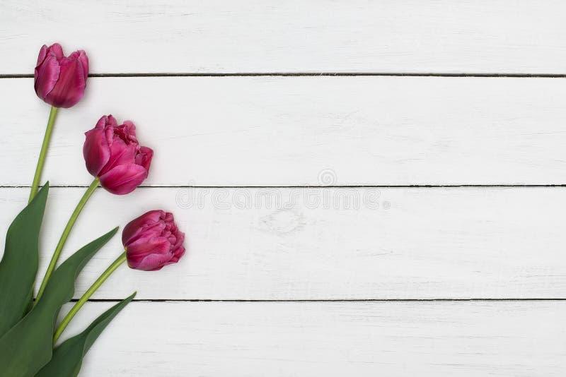 Flores rosadas de los tulipanes en la tabla de madera Visión superior, espacio de la copia imágenes de archivo libres de regalías