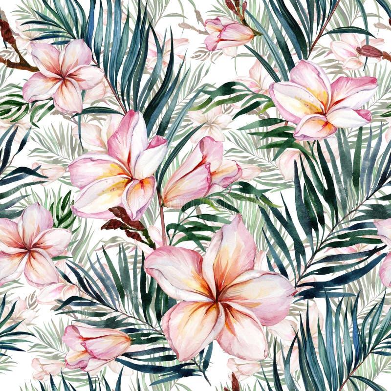 Flores rosadas del plumeria y hojas de palma exóticas en modelo tropical inconsútil Fondo blanco Pintura de la acuarela stock de ilustración