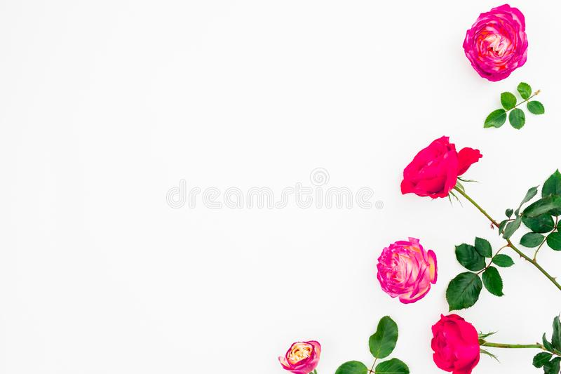 Flores rosadas en colores pastel de las rosas y hojas verdes en el fondo blanco Endecha plana, visión superior con el espacio de  imágenes de archivo libres de regalías