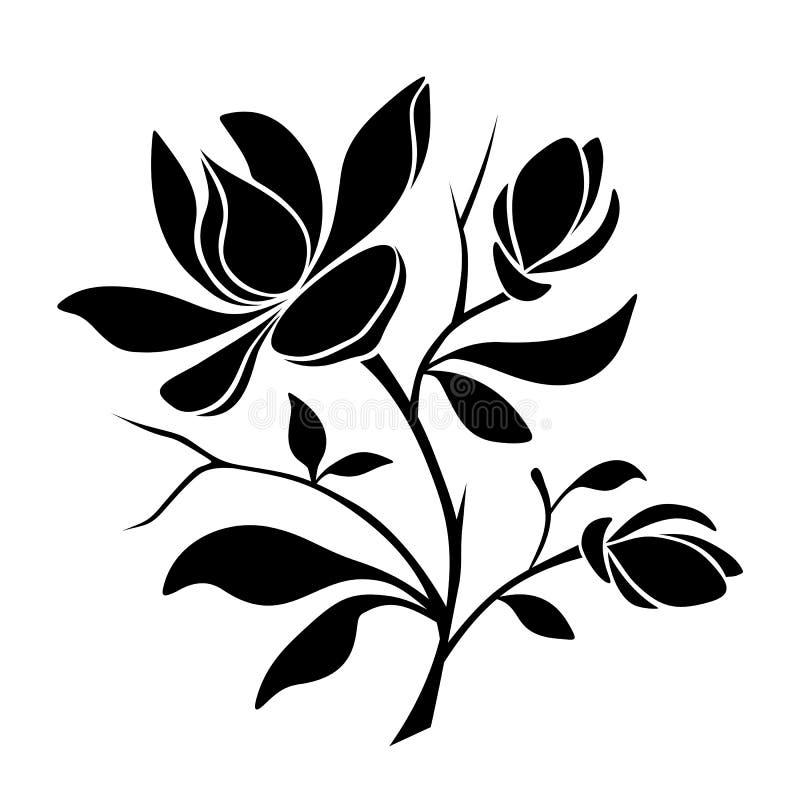 Flores rosadas hermosas de la magnolia Silueta negra del vector stock de ilustración