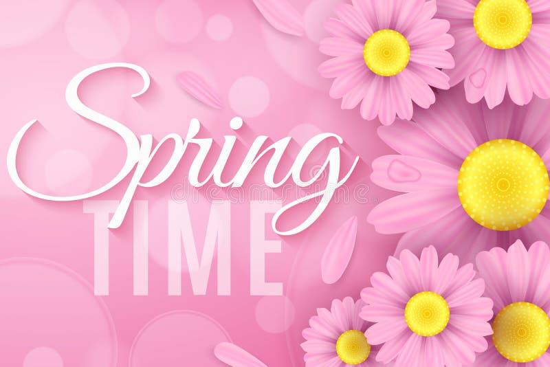 Flores rosadas realistas de la margarita Cubierta moderna elegante estacional de la primavera para su proyecto Composición ecológ stock de ilustración