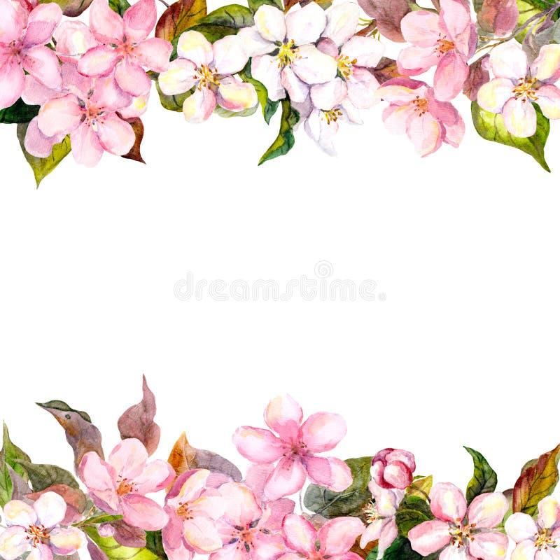 Flores rosadas retras - manzana, flor de cerezo Marco floral para la tarjeta de felicitación Acuarela stock de ilustración