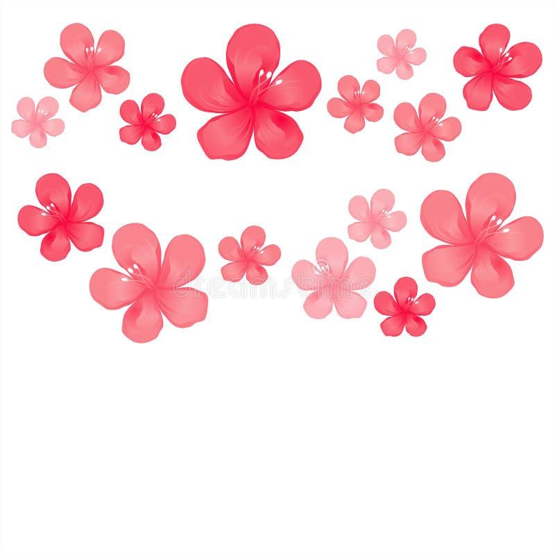 Flores rosadas rojas aisladas en el fondo blanco flores del Apple-árbol Cherry Blossom Cmyk del vector EPS 10 stock de ilustración