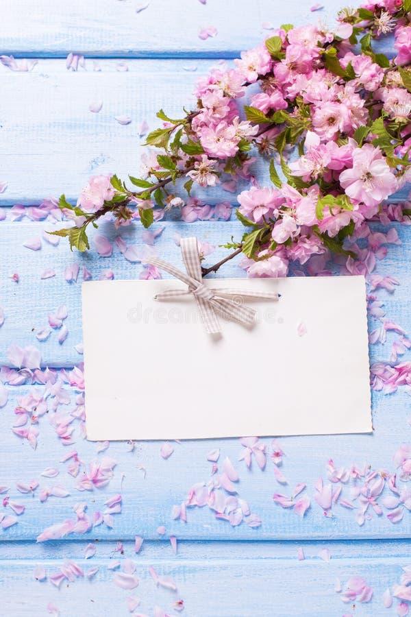 Flores rosadas y Empty tag de Sakura en tablones de madera azules fotos de archivo