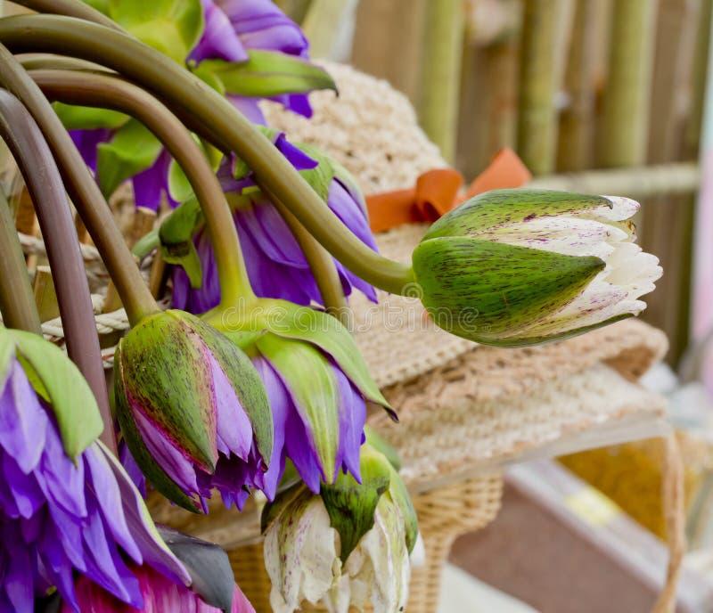 Flores rosadas y púrpuras de Floristry de loto en el florero de cristal imágenes de archivo libres de regalías