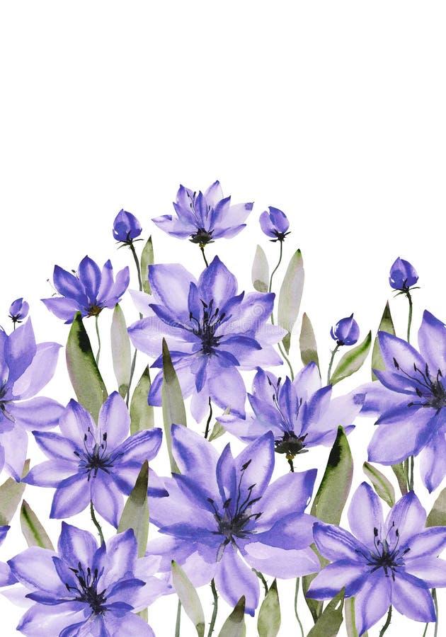 Flores roxas bonitas com hastes verdes e folhas no fundo branco Teste padrão floral sem emenda Pintura da aguarela ilustração stock