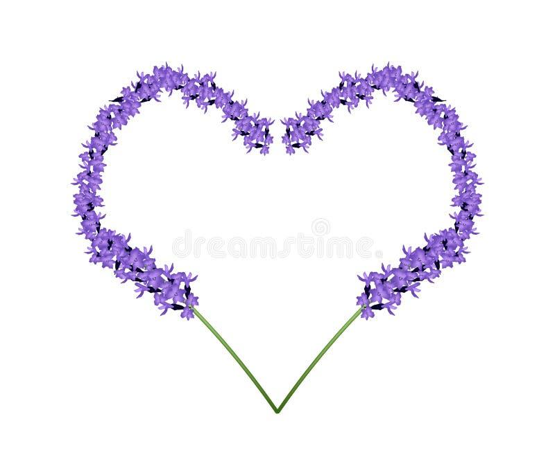 Flores roxas da alfazema no quadro da forma do coração ilustração stock