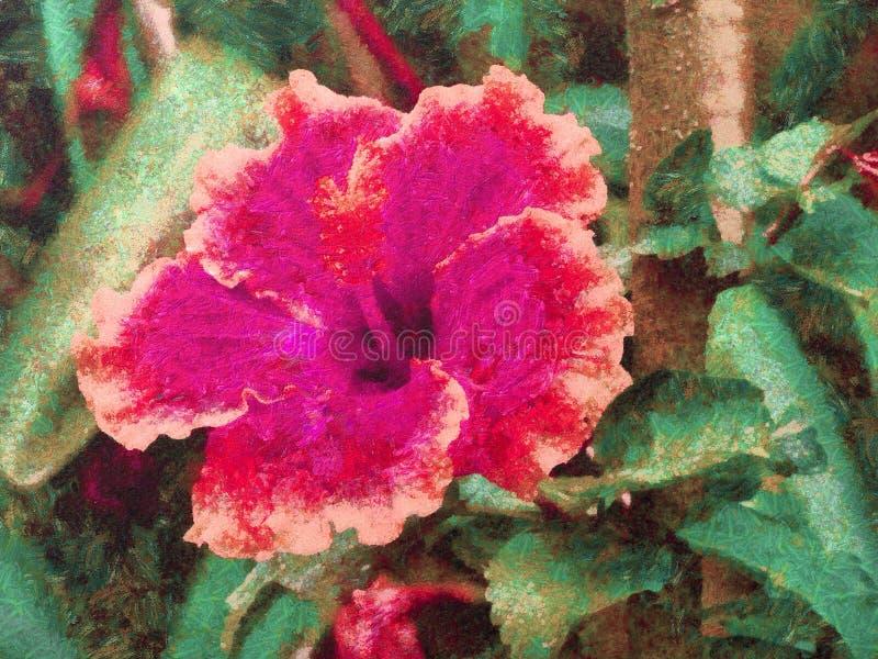 Flores roxas da malva rosa em um jardim ilustração do vetor