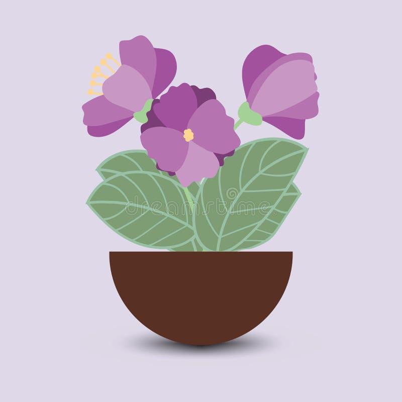 Flores roxas em um potenciômetro foto de stock