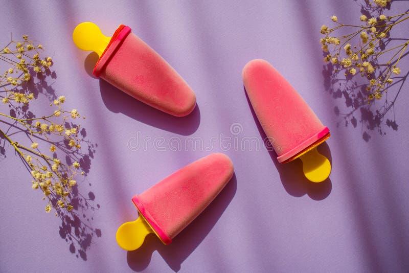 3 flores roxas naturais congeladas do gelado e do campo no fundo violeta colorido com sombras Ver?o doce imagens de stock
