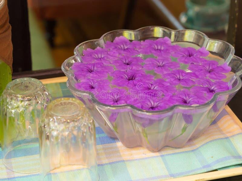 Flores roxas que flutuam no frasco de vidro foto de stock royalty free