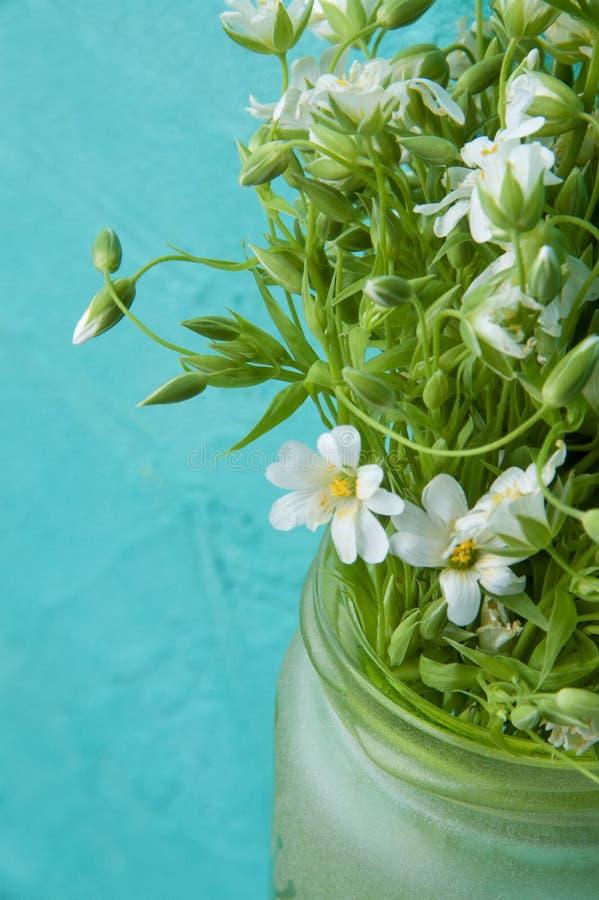 Download Flores salvajes blancas imagen de archivo. Imagen de hoja - 100532949