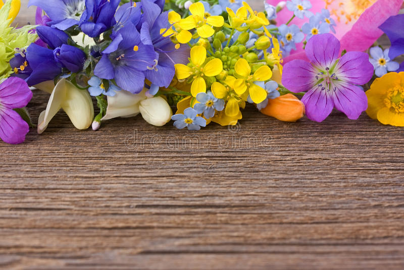 Flores salvajes en un viejo fondo de madera imagen de archivo libre de regalías