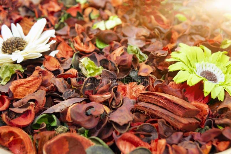 Flores secadas coloridos, usadas para sabões e perfumes assim como coloração, tinturas imagens de stock royalty free