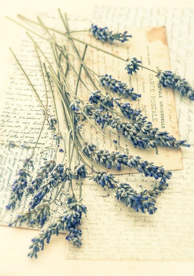 Flores secadas da alfazema e cartas de amor velhas fotografia de stock