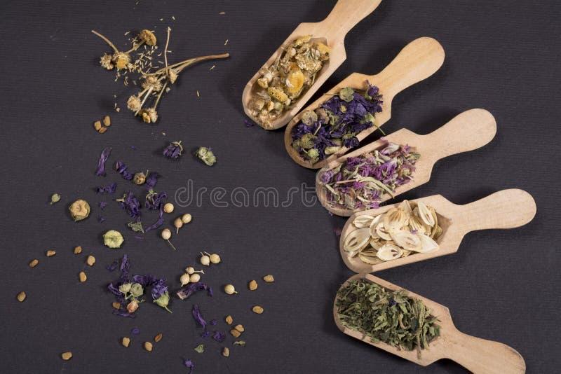 Flores secadas da tisana foto de stock