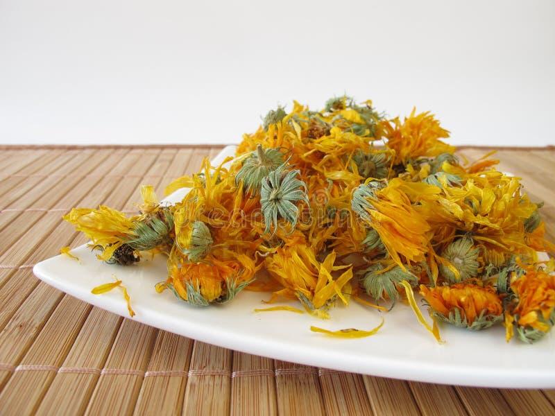 Flores secadas de la maravilla imagen de archivo